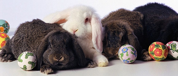 A hímes tojás és a húsvéti nyuszi eredete - Ami még a Bibliában sincs benne
